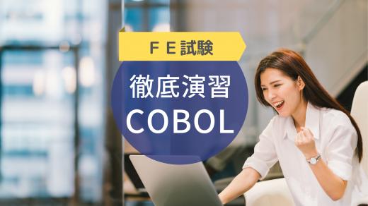 基本情報技術者試験 徹底演習(COBOL)2019年版